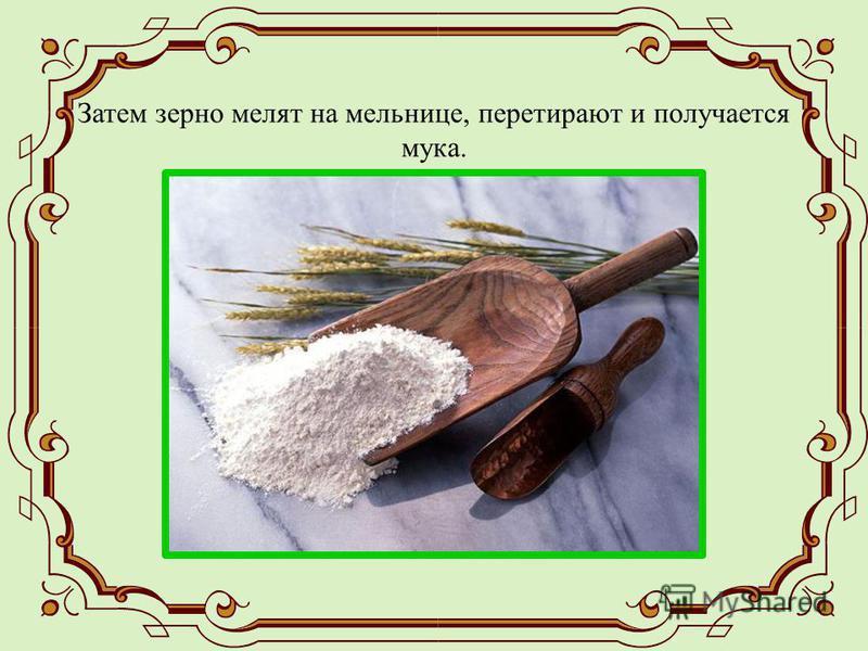 Затем зерно мелят на мельнице, перетирают и получается мука.