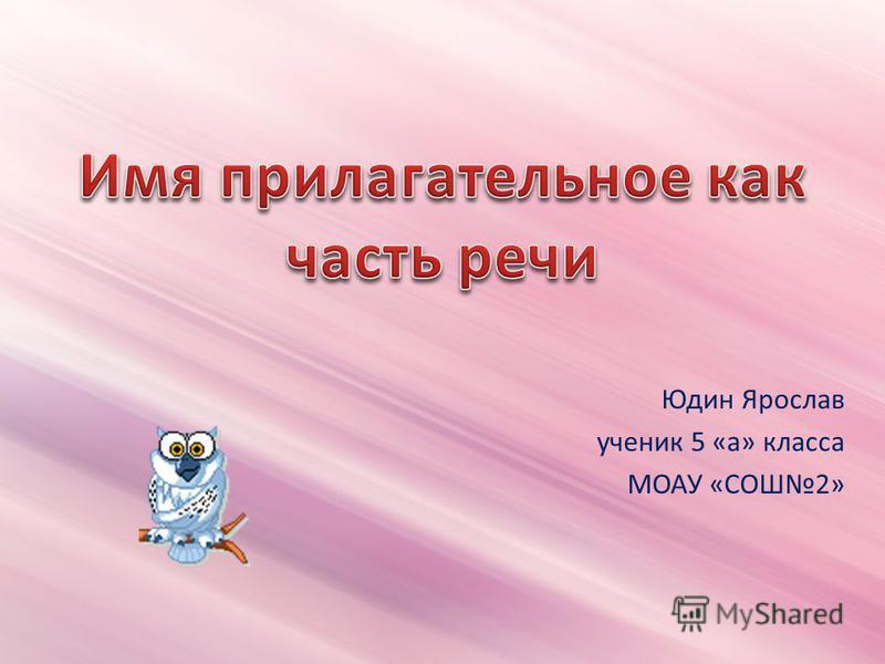 Юдин Ярослав ученик 5 «а» класса МОАУ «СОШ2»