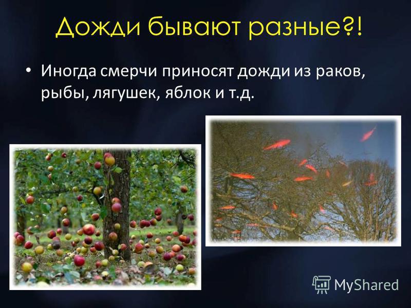 Дожди бывают разные?! Иногда смерчи приносят дожди из раков, рыбы, лягушек, яблок и т.д.