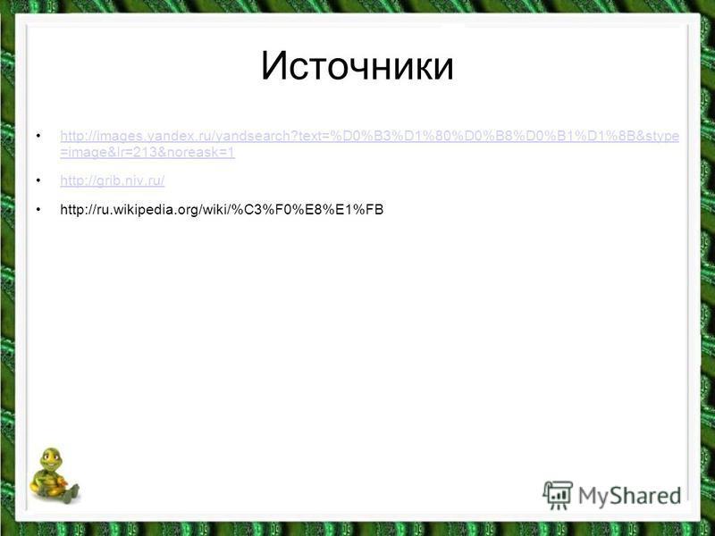 Источники http://images.yandex.ru/yandsearch?text=%D0%B3%D1%80%D0%B8%D0%B1%D1%8B&stype =image&lr=213&noreask=1 http://images.yandex.ru/yandsearch?text=%D0%B3%D1%80%D0%B8%D0%B1%D1%8B&stype =image&lr=213&noreask=1 http://grib.niv.ru/ http://ru.wikipedi