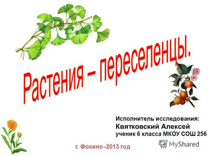 Исполнитель исследования: Квятковский Алексей ученик 6 класса МКОУ СОШ 256 г. Фокино -2013 год