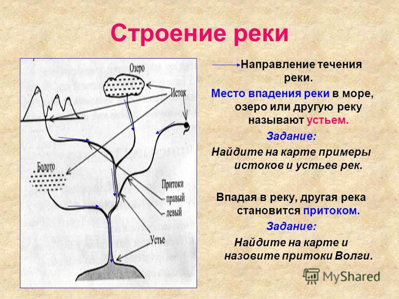 Строение реки Направление течения реки. Место впадения реки в море, озеро или другую реку называют устьем. Задание: Найдите на карте примеры истоков и устьев рек. Впадая в реку, другая река становится притоком. Задание: Найдите на карте и назовите пр