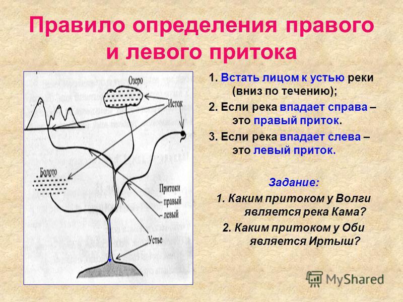 Правило определения правого и левого притока 1. Встать лицом к устью реки (вниз по течению); 2. Если река впадает справа – это правый приток. 3. Если река впадает слева – это левый приток. Задание: 1. Каким притоком у Волги является река Кама? 2. Как