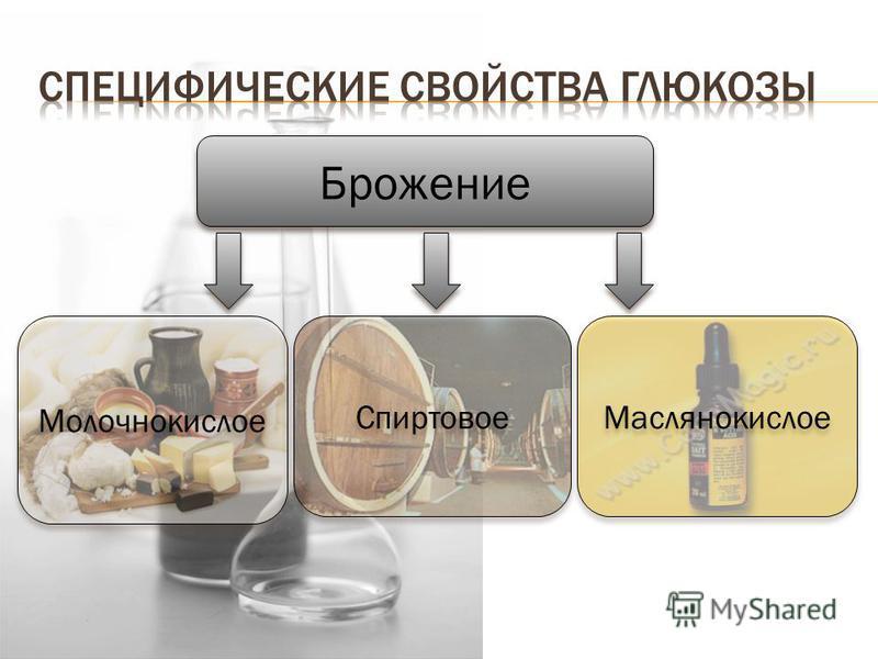 Брожение Молочнокислое Спиртовое Маслянокислое
