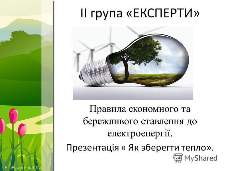 ProPowerPoint.Ru ІІ група «ЕКСПЕРТИ» Правила економного та бережливого ставлення до електроенергії. Презентація « Як зберегти тепло».