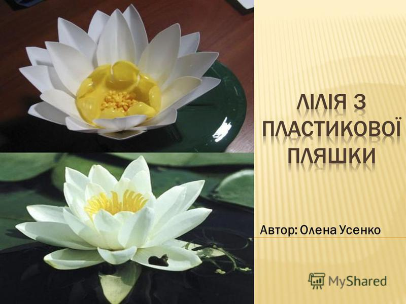 Автор: Олена Усенко