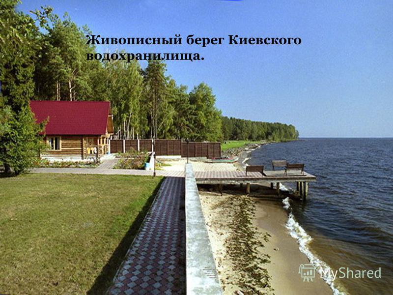 г. Тернополь. Тернопольский став на р. Сереет был прудом ещё в XVI в. Живописный берег Киевского водохранилища.