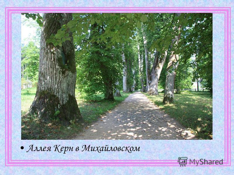 Аллея Керн в Михайловском