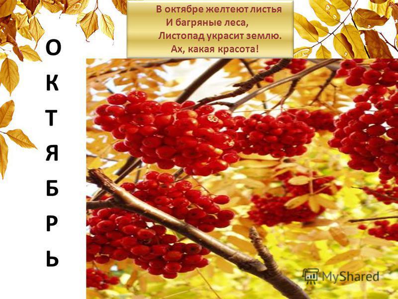 В октябре желтеют листья И багряные леса, Листопад украсит землю. Ах, какая красота! В октябре желтеют листья И багряные леса, Листопад украсит землю. Ах, какая красота!