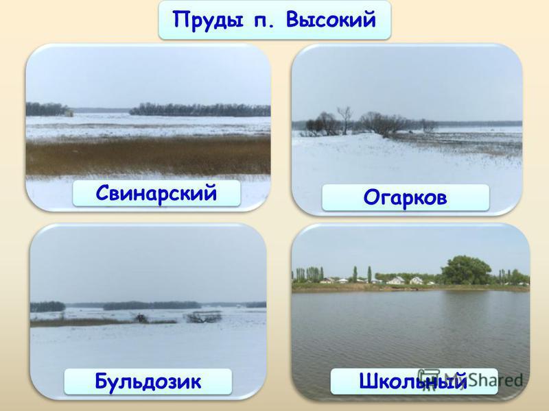 Пруды п. Высокий Свинарский Огарков Бульдозик Школьный