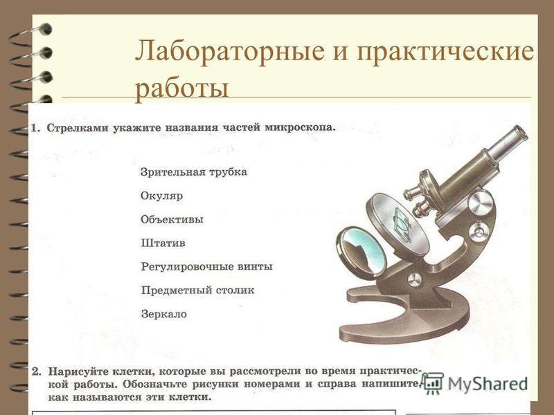 Лабораторные и практические работы