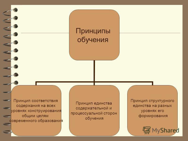 Принципы обучения Принцип соответствия содержания на всех уровнях конструирования общим целям современного образования Принцип единства содержательной и процессуальной сторон обучения Принцип структурного единства на разных уровнях его формирования