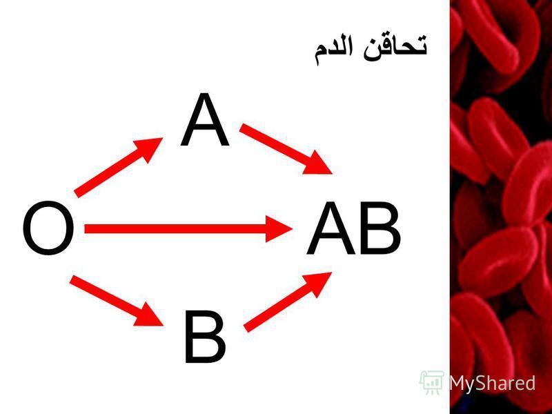 تحاقن الدم O A B AB