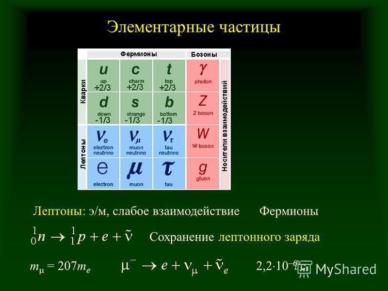 Элементарные частицы Сохранение лептонного заряда Лептоны: э/м, слабое взаимодействие m = 207m e 2,2 10 –6 c Фермионы
