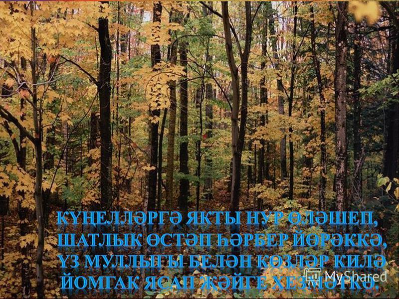 11.08.20153http://aida.ucoz.ru