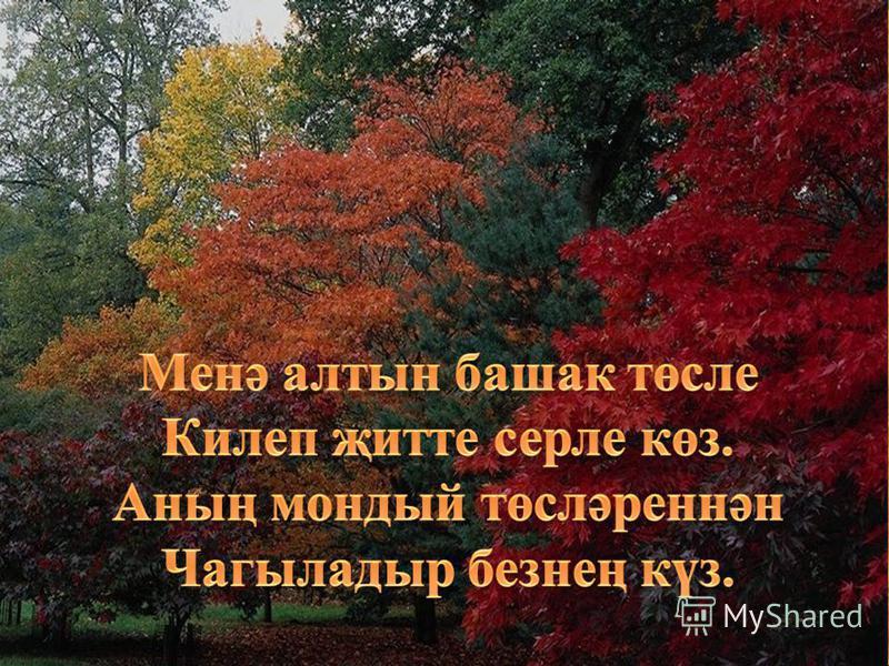 11.08.2015http://aida.ucoz.ru5
