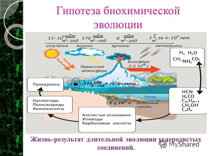 Гипотеза биохимической эволюции Жизнь-результат длительной эволюции углеродистых соединений.