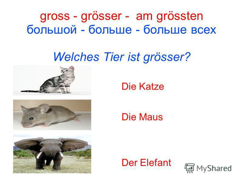 gross - grösser - am grössten большой - больше - больше всех Welches Tier ist grösser? Die Katze Die Maus Der Elefant