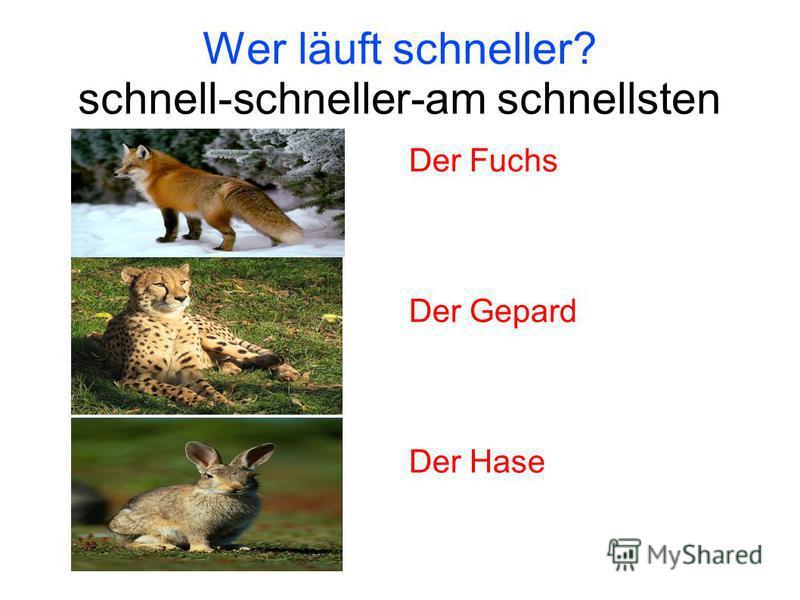 Wer läuft schneller? schnell-schneller-am schnellsten Der Fuchs Der Gepard Der Hase