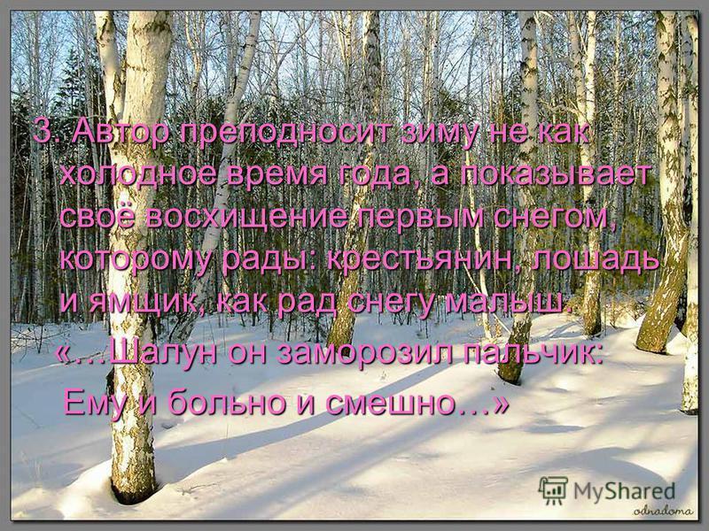 3. Автор преподносит зиму не как холодное время года, а показывает своё восхищение первым снегом, которому рады: крестьянин, лошадь и ямщик, как рад снегу малыш. «…Шалун он заморозил пальчик: «…Шалун он заморозил пальчик: Ему и больно и смешно…» Ему