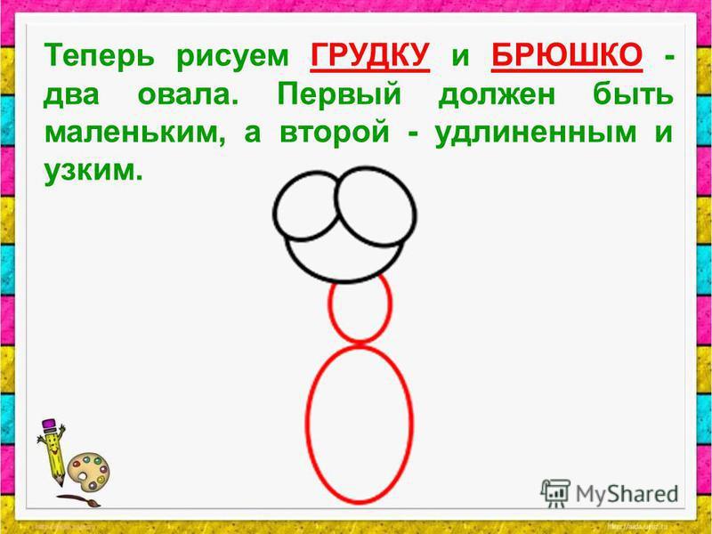 Теперь рисуем ГРУДКУ и БРЮШКО - два овала. Первый должен быть маленьким, а второй - удлиненным и узким.
