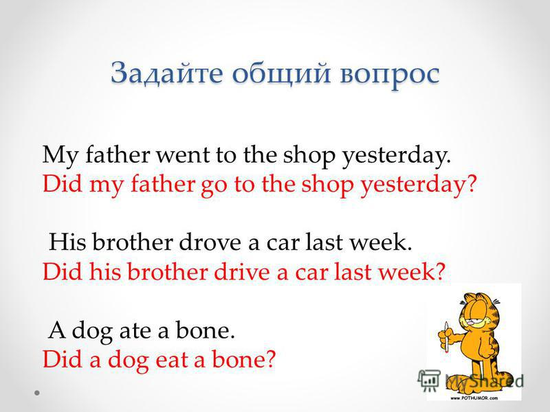 Задайте общий вопрос My father went to the shop yesterday. Did my father go to the shop yesterday? His brother drove a car last week. Did his brother drive a car last week? A dog ate a bone. Did a dog eat a bone?