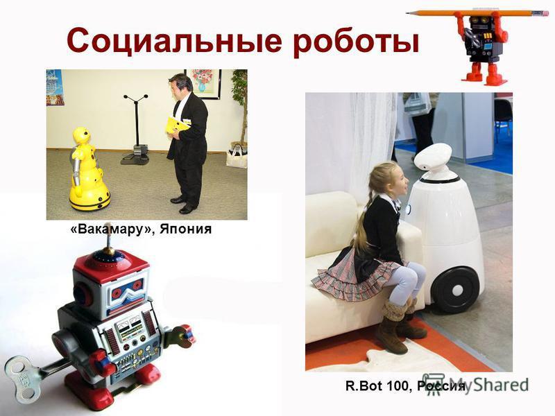 Социальные роботы «Вакамару», Япония R.Bot 100, Россия