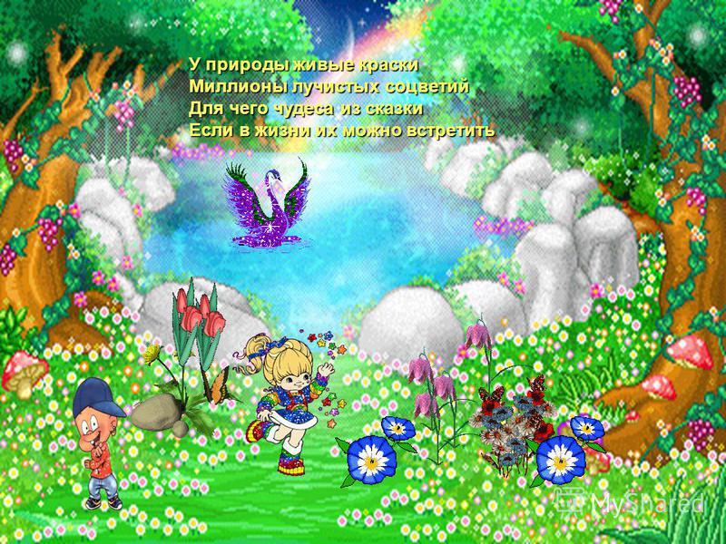 У природы живые краски Миллионы лучистых соцветий Для чего чудеса из сказки Если в жизни их можно встретить