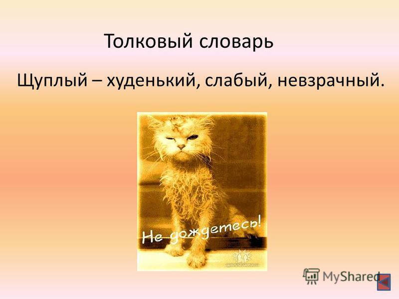Толковый словарь Щуалый – худенький, слабый, невзрачный.