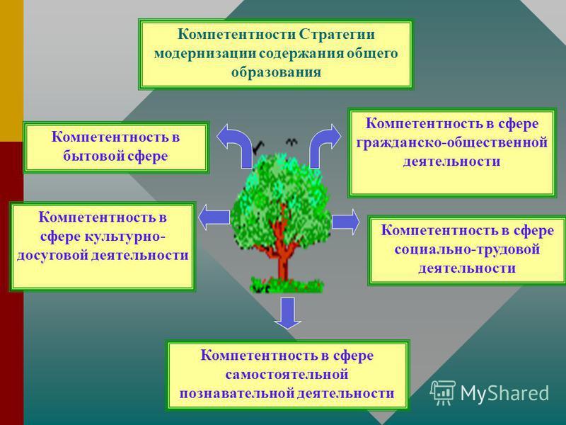 Компетентность в сфере социально-трудовой деятельности Компетентность в бытовой сфере Компетентность в сфере гражданско-общественной деятельности Компетентность в сфере самостоятельной познавательной деятельности Компетентности Стратегии модернизации