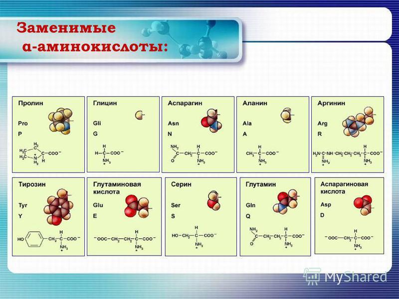 Заменимые α-аминокислоты: