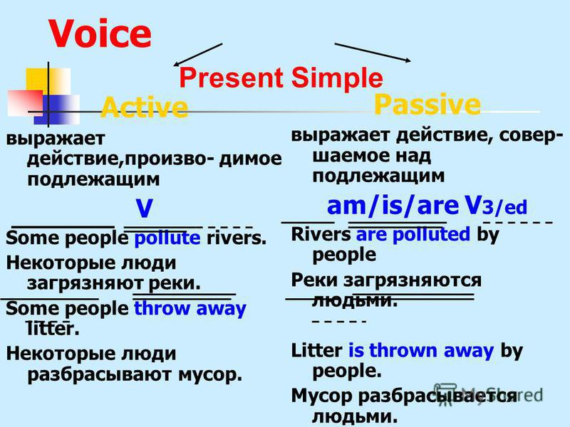 Present Simple Past Simple Future Simple Настоящее простое Прошедшее простое Будущее простое V Vs/es Ved/2 will V