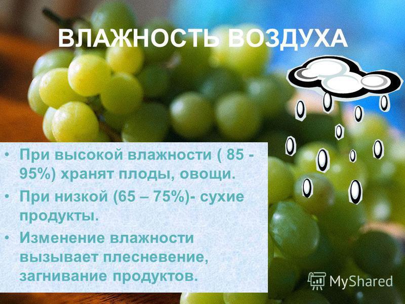 ВЛАЖНОСТЬ ВОЗДУХА При высокой влажности ( 85 - 95%) хранят плоды, овощи. При низкой (65 – 75%)- сухие продукты. Изменение влажности вызывает плесневение, загнивание продуктов.
