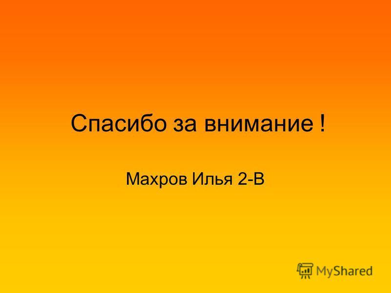 Спасибо за внимание ! Махров Илья 2-В