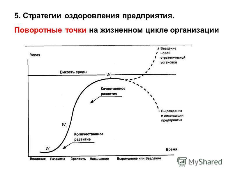 5. Стратегии оздоровления предприятия. Поворотные точки на жизненном цикле организации