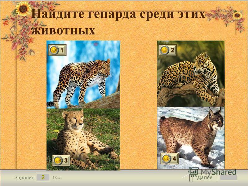 Далее 2 Задание 1 бал. Найдите гепарда среди этих животных 1111 2222 3333 4444