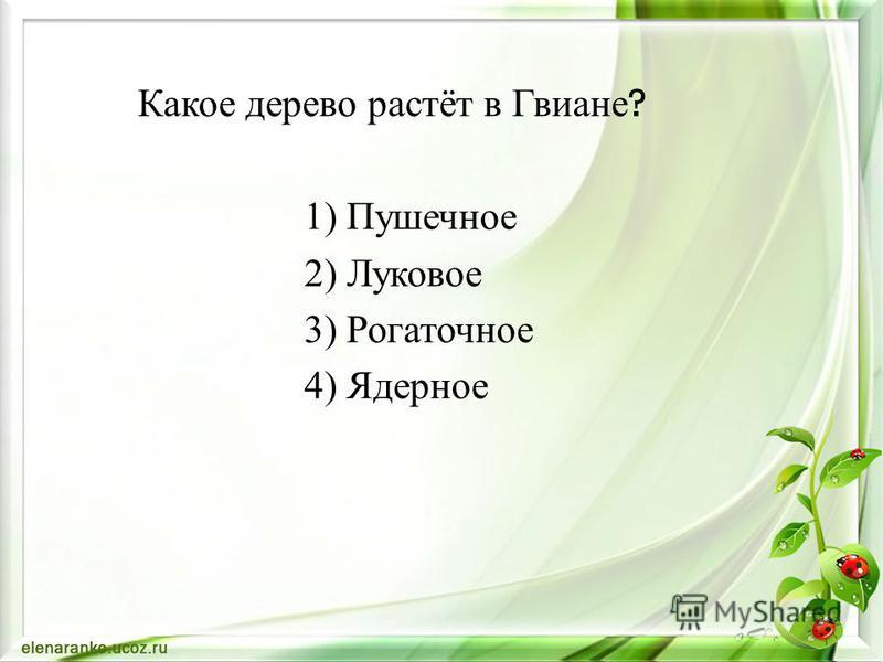 Какое дерево растёт в Гвиане ? 1) Пушечное 2) Луковое 3) Рогаточное 4) Ядерное