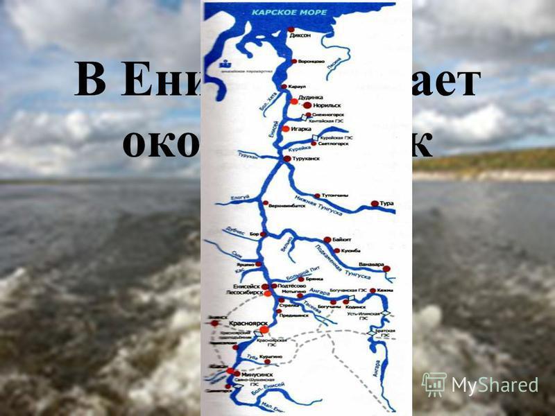 В Енисей впадает около ста рек