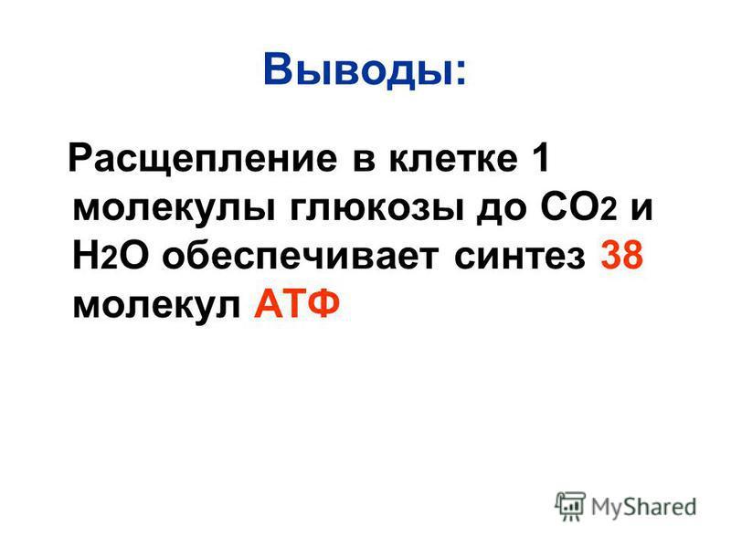 Выводы: Расщепление в клетке 1 молекулы глюкозы до СО 2 и Н 2 О обеспечивает синтез 38 молекул АТФ