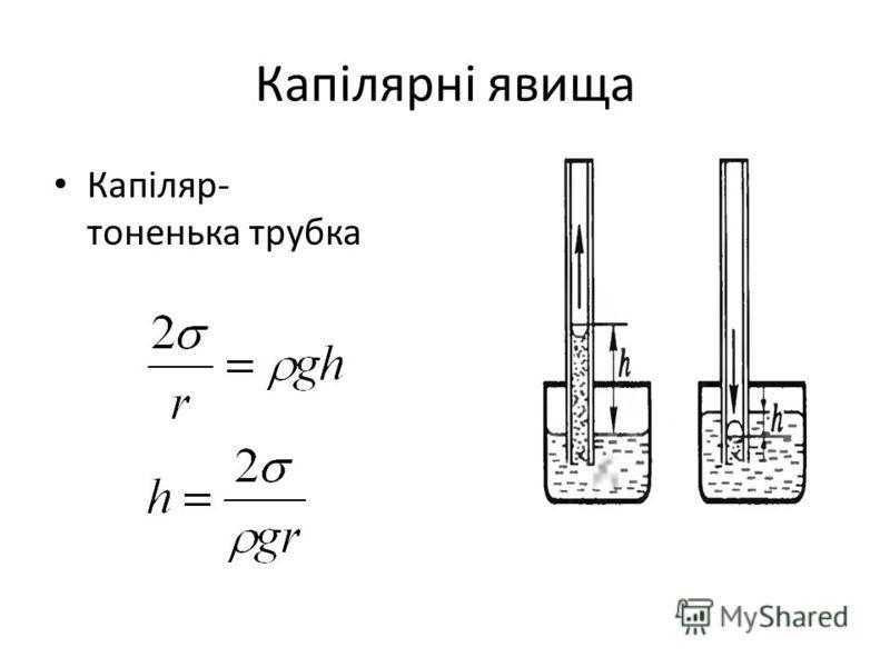 Капілярні явища Капіляр- тоненька трубка