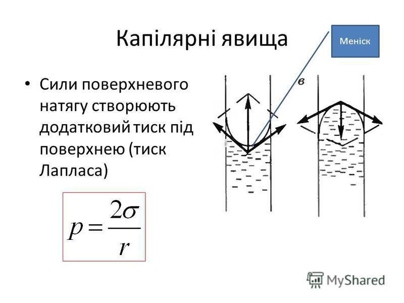 Капілярні явища Сили поверхневого натягу створюють додатковий тиск під поверхнею (тиск Лапласа) Меніск