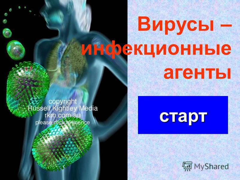 старт Вирусы – инфекционные агенты