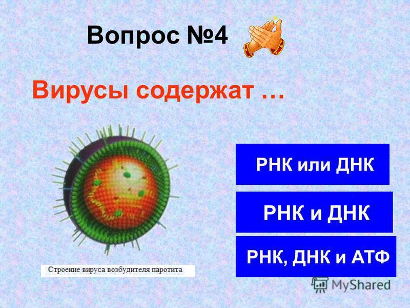 Вопрос 4 РНК или ДНК РНК и ДНК РНК, ДНК и АТФ Вирусы содержат …