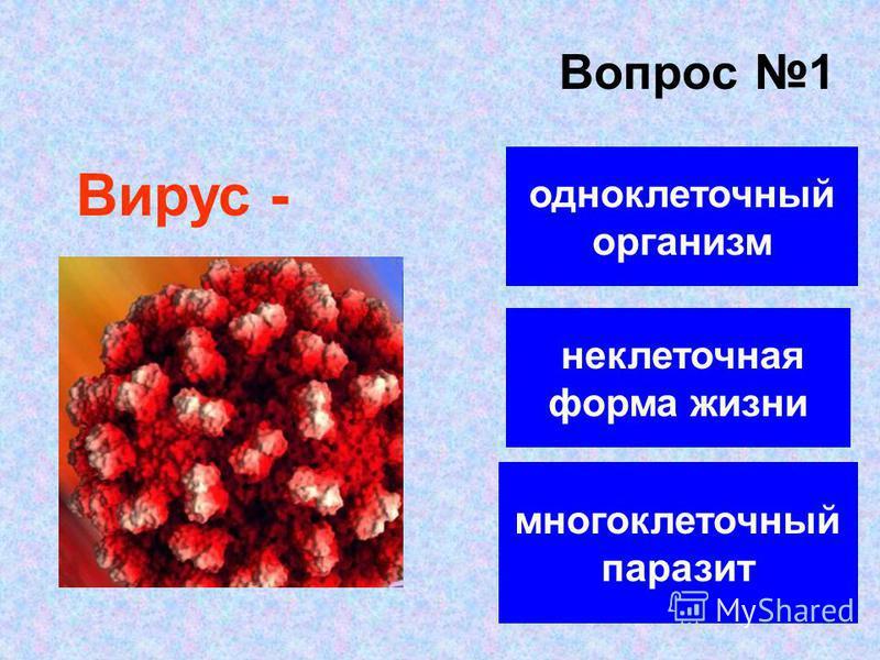 Вопрос 1 неклеточная форма жизни одноклеточный организм многоклеточный паразит Вирус -