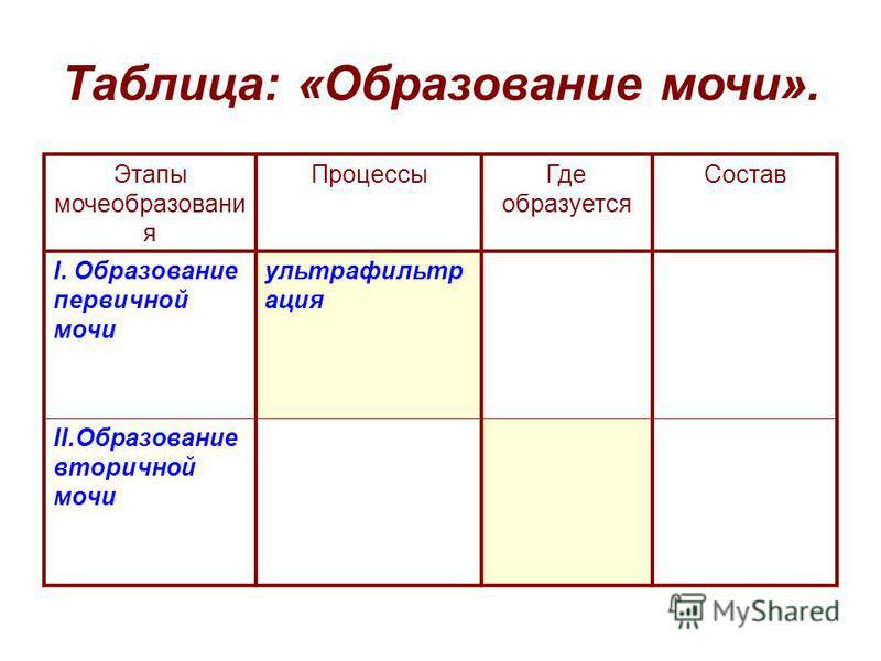 Таблица: «Образование мочи». Этапы мочеобразования Процессы Где образуется Состав I. Образование первичной мочи ультрафильтрация II.Образование вторичной мочи