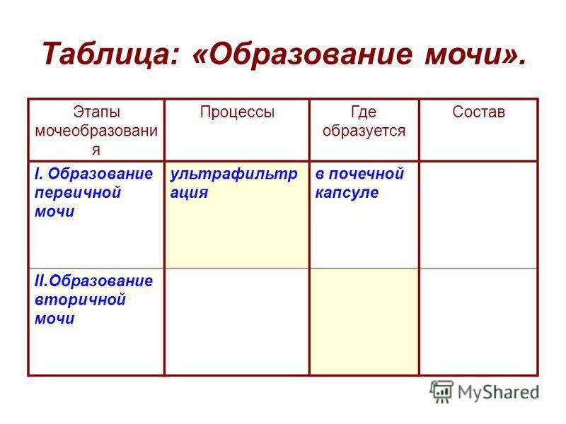 Таблица: «Образование мочи». Этапы мочеобразования Процессы Где образуется Состав I. Образование первичной мочи ультрафильтрация в почечной капсуле II.Образование вторичной мочи