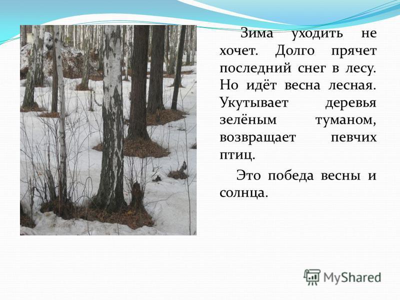 Зима уходить не хочет. Долго прячет последний снег в лесу. Но идёт весна лесная. Укутывает деревья зелёным туманом, возвращает певчих птиц. Это победа весны и солнца.