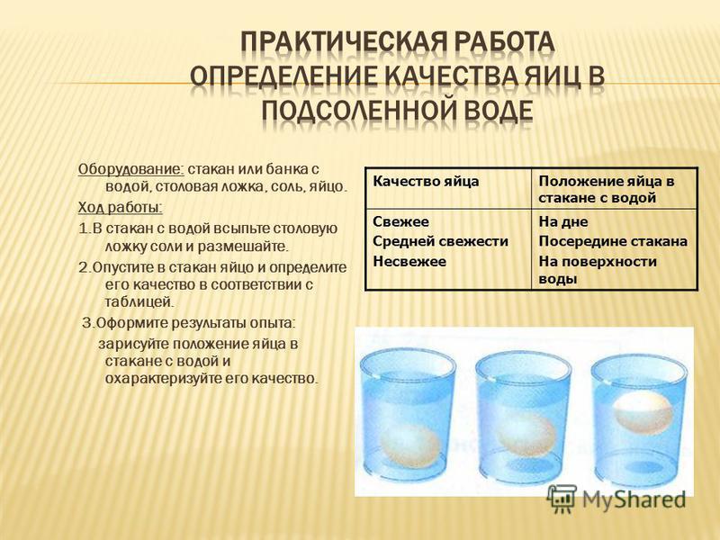 В процессе приготовления пищи необходимо соблюдать правила: 1. Хранить яйца в холодильнике; 2. Использовать только свежие, хорошо вымытые яйца