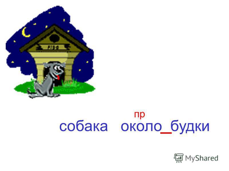 собака около будки пр
