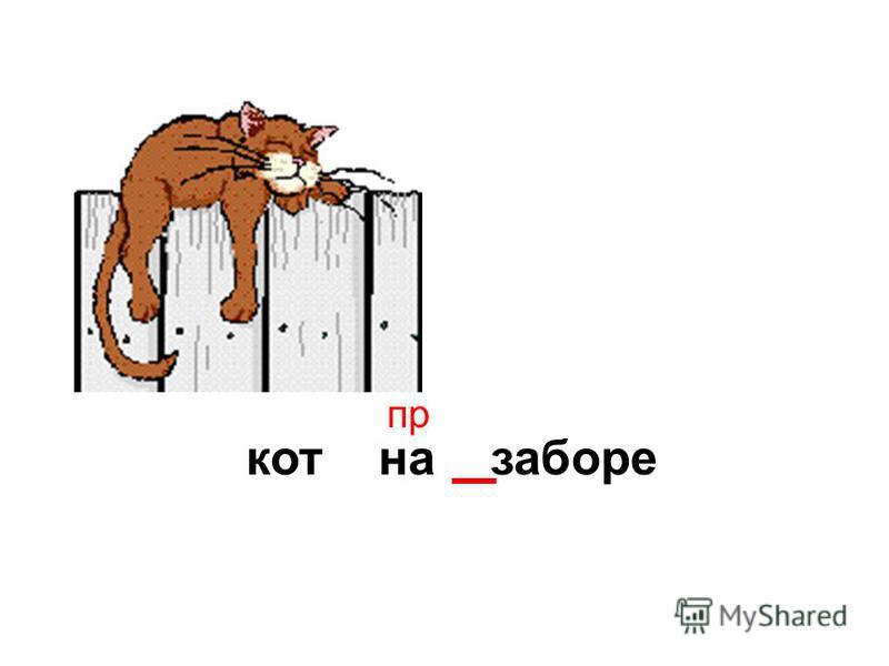 кот на заборе пр